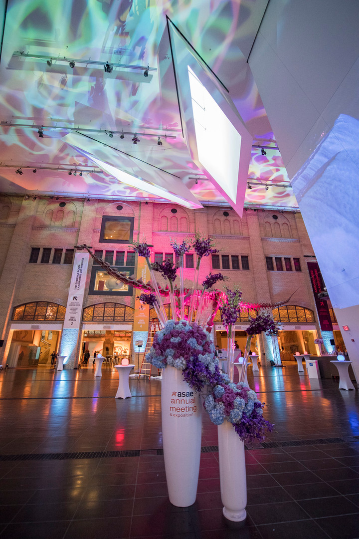 2017 ASAE Annual Meeting Opening Reception at the ROM
