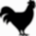 Chicken_Poultry-512 (1).png