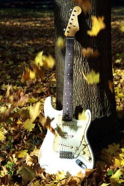 """Fender Stratocaster """"Sam"""""""