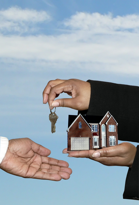 Property Buying Consultation