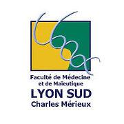 Lyon Sud.jpg