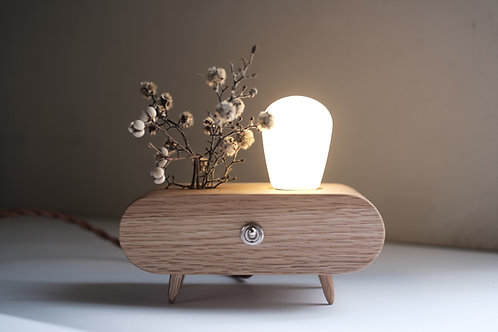 The Plant | lighting