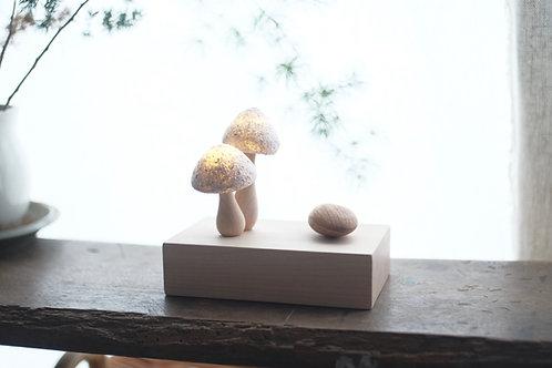 The Mushroom Family | night light