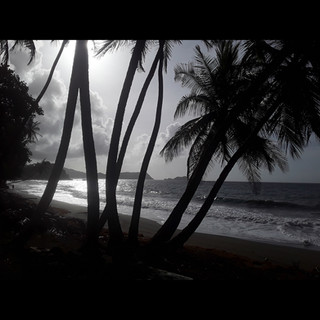 Atlantic Coast, Tobago.