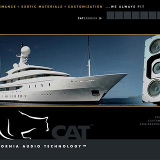 CAT web site interface design & production