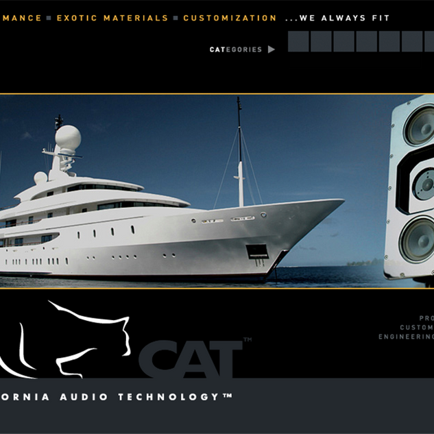 CAT web site interface design & production