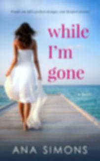 While I'm Gone.jpg
