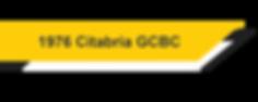 1976 Citabria GCBC.png