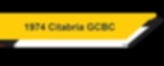 1974 Citabria GCBC.png
