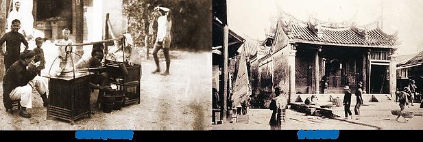 小月季-歷史照片.png