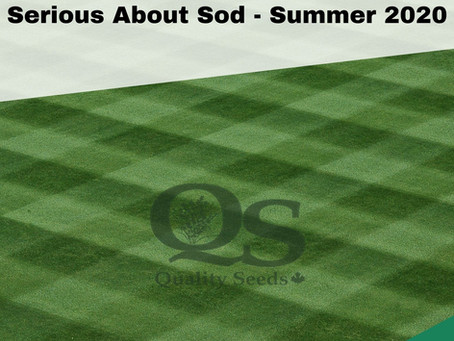 Serious About Sod Summer 2020