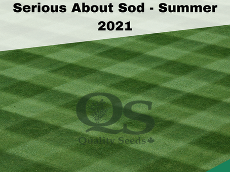 Serious About Sod - Summer 2021
