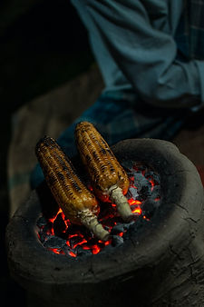 Corn on cob roasted
