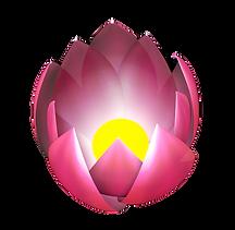 Lotus%20render_edited.png