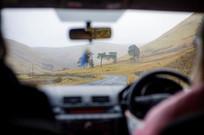Road Trip. #scotland #scottishfold #high