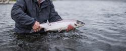 Fishing_edited
