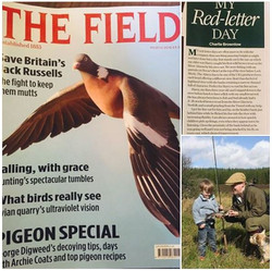 Field Red Letter