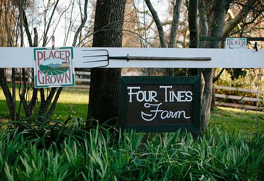 Four Tines Farm