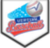 Virtual-Baseball-Logo2.png