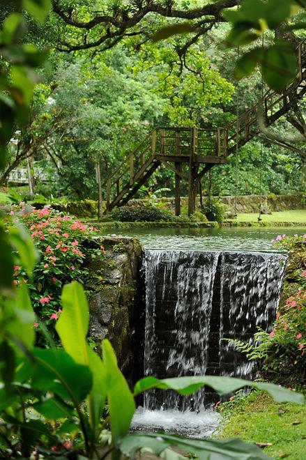 Natural Swimming Pool.jpg