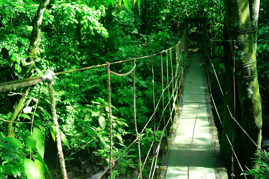 Canopy Adventure Panama