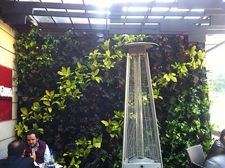jardinesverticalesbogota.jpg