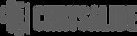 chrysalide 2.png
