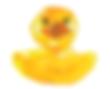 Screen Shot 2020-06-28 at 1.17.23 PM.png