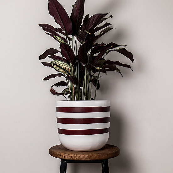 Stripes Planter - By Becky Duffield