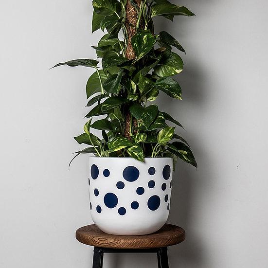 Dotti Planter - By Becky Duffield
