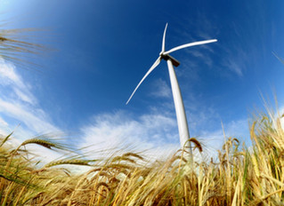 Natuurlijk Nieuwkoop: Meer aandacht voor draagvlak en beter nadenken over uitrol van windturbines en