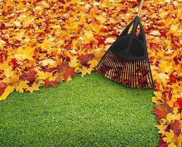 leaf-rake-web-1024x829.jpg