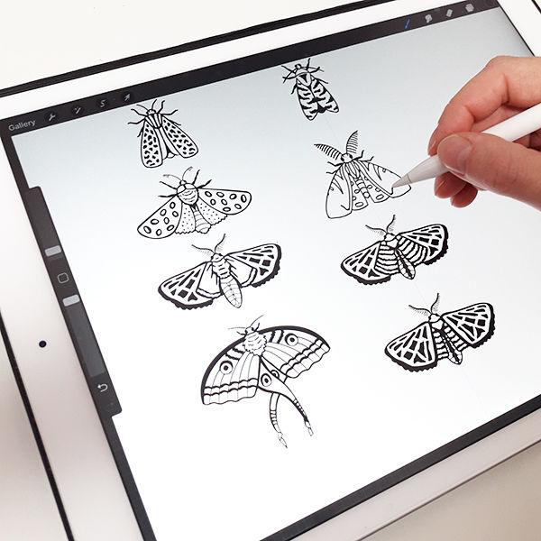 majestic moths making of.jpg