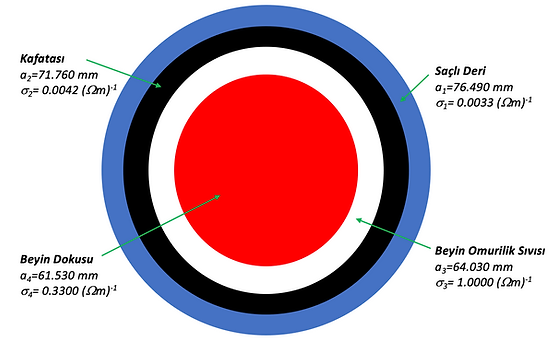 Concentric_TR .png
