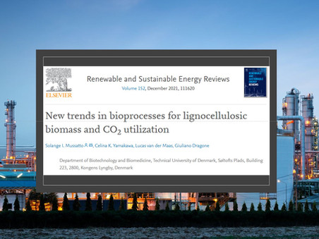 Trends for the development of biomass- and CO2-based bioprocesses