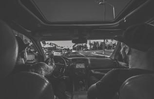 Backseat driver.