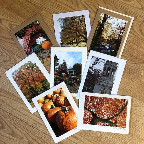 Custom Collection - Original Photograph Greeting Cards