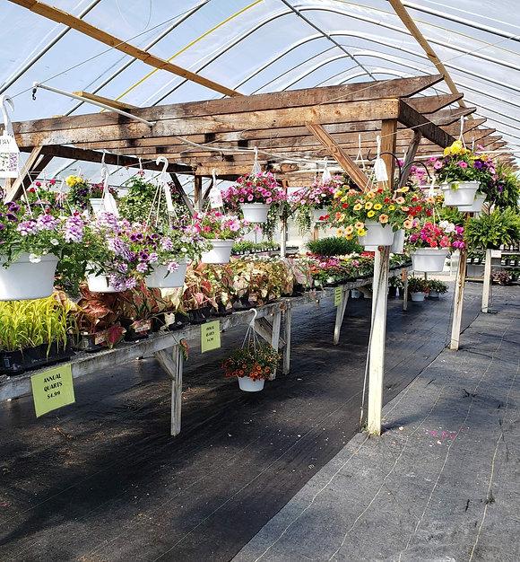 Garden Center_edited.jpg