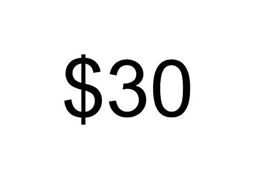 Donate $30