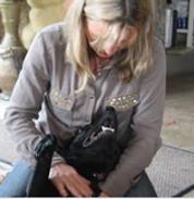 Animal Osteopath Chiropractor Horses Dogs Warkworth