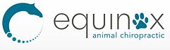 Animal Chiropractor Horses Dogs Bay of Plenty Rotorua