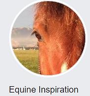 Bowen Therapy Horses Canterbury