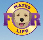 Canine massage Myofunctional Otago