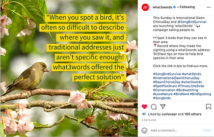 what3words insta.png