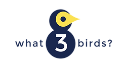 what3birds logo.png