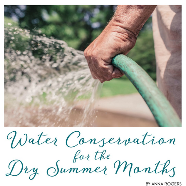Water Conservation for Simply Family Magazine
