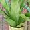 Thumbnail: Pot Plant Holder - green baroque