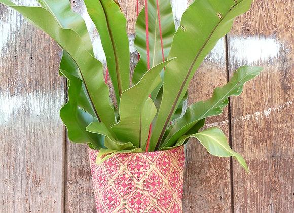 Pot Plant Holder - pink baroque