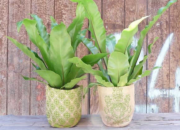 Pot Plant Holder - green baroque