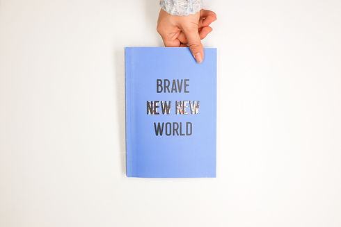 Brave New new world 04.jpg